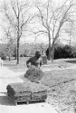 Preview image of Groundskeeping worker laying sod
