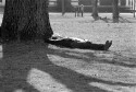 Preview image of Student napping on Grounds
