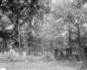 Preview image of Monticello Cemetery