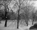 Preview image of University of Virginia Grounds Views