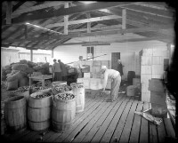 Charlottesville Canning Factory