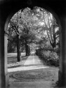 Preview image of Long Walk from the Rotunda Colonnade, University of Virginia
