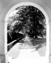 Preview image of Long Walk from Rotunda Colonnade, University of Virginia