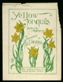 Preview image of Yellow jonquils