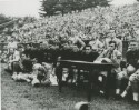 Preview image of Football game