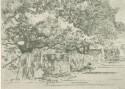 uva-lib:2155755