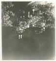 Preview image of Rotunda at night
