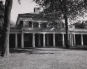 Preview image of Pavilion VIII