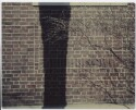 Preview image of Peabody Hall or Clark Hall brick wall sample