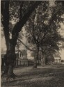 Preview image of West Lawn, Pavilion VII