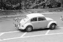 Preview image of Volkswagen Beetle during student move in
