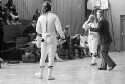 Preview image of Fencing