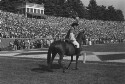 Preview image of Cavman and horse at University of Virginia versus Virginia Polytechnic Institute football game