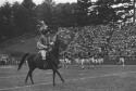Preview image of Cavman and horse at a University of Virginia versus West Virginia University football game