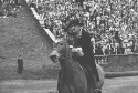 Preview image of Cavman on horseback at University of Virginia versus Army football game