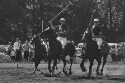 Preview image of University of Virginia versus Yale University polo match