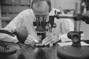 Preview image of Person with microscope at Mountain Lake Biological Station