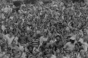 Preview image of Spectators at University of Virginia versus Duke University football game