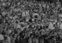 Preview image of Spectators and marching band at University of Virginia versus University of North Carolina football game