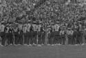 Preview image of Marching band at University of Virginia versus University of North Carolina football game