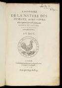 Preview image of L'histoire de la nature des oyseaux