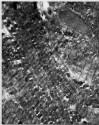 uva-lib:2167937